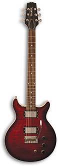 The Hamer Archtop Electric Guitar
